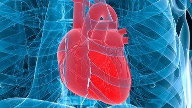 Work System and 4 Healthy Heart Function